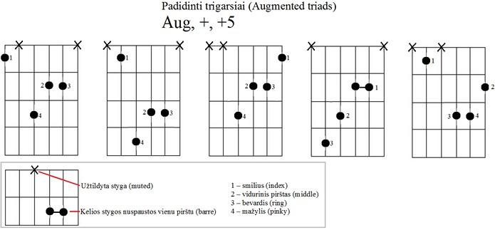 padidinti trigarsiai - akordu formos